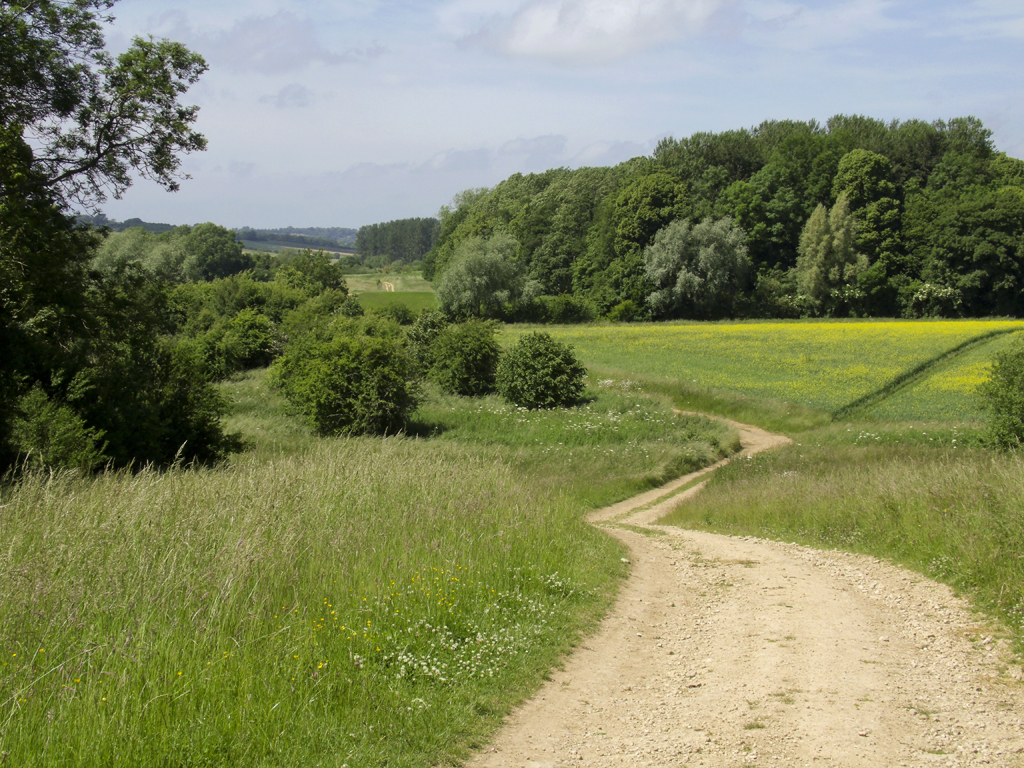 Rissington footpath