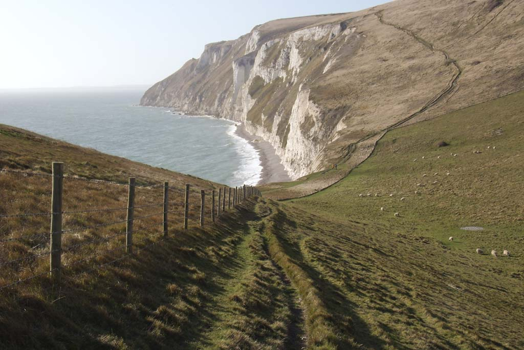 Coast path, White Nothe