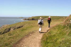 The coast path around Solva