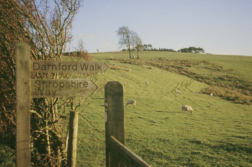 Signpost, Shropshire Way