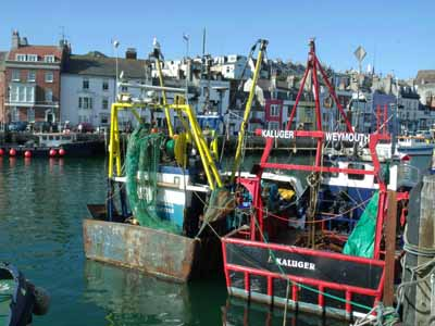 Weymouth fishing harbour